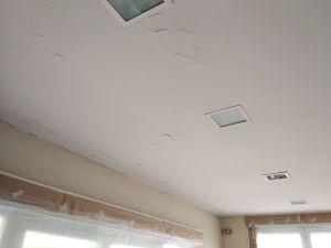 Estado techos Salon y entrada (4)