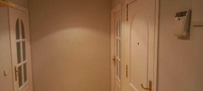 Lacado de puertas blanco y plastico liso gris con veloglas (21)