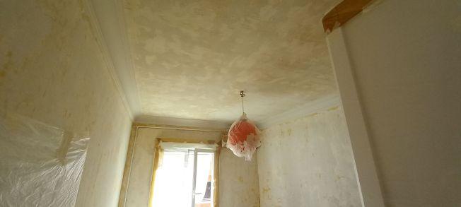 Aceite de linaza en techos y paredes (14)