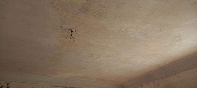 Aceite de linaza en techos y paredes (5)
