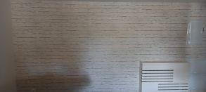 Papel Pintado Labrillo - Cañaveral (1)