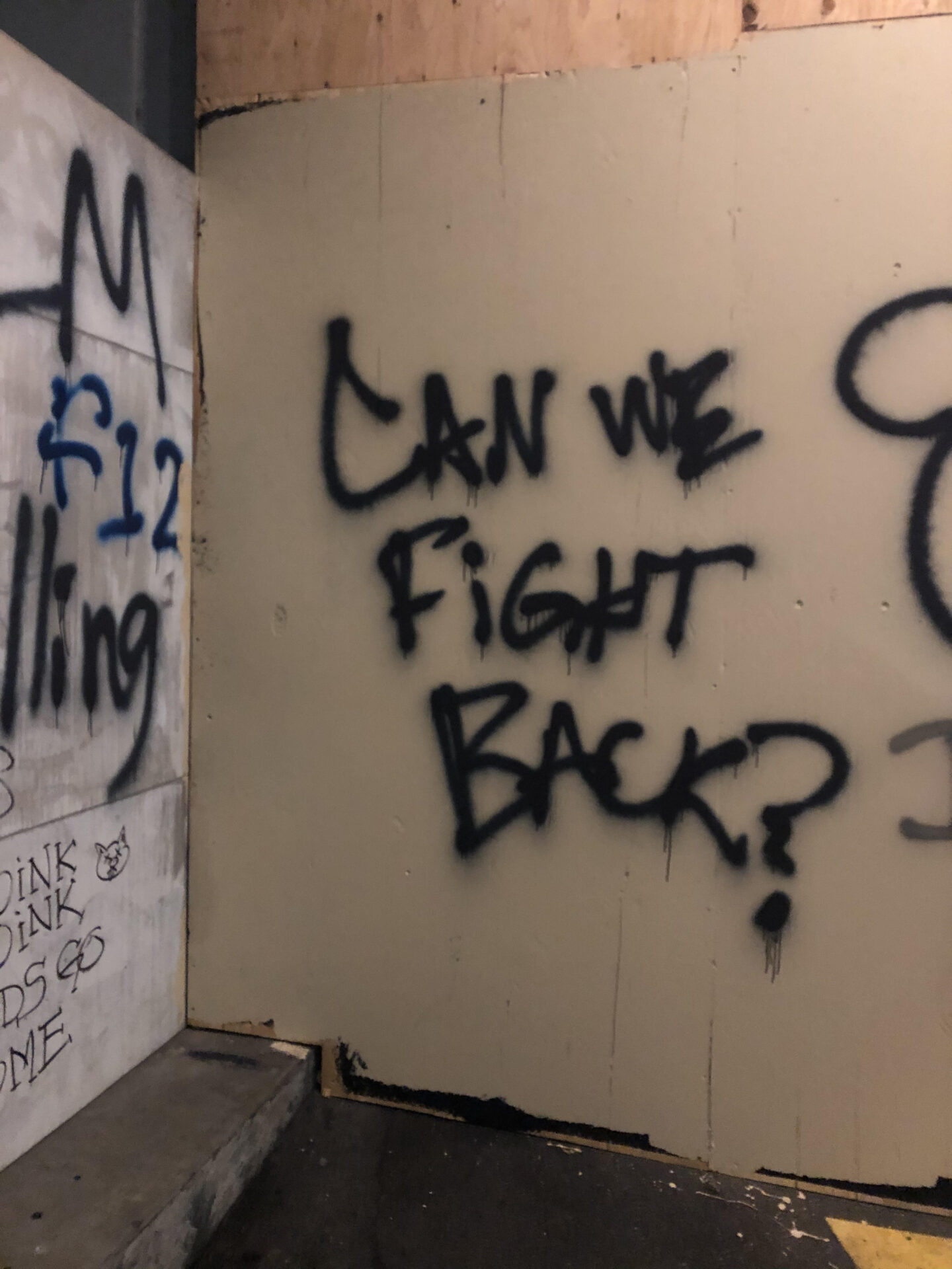 """Photograph of the words """"Can We Fight Back?"""" spray painted in black on a beige wall."""