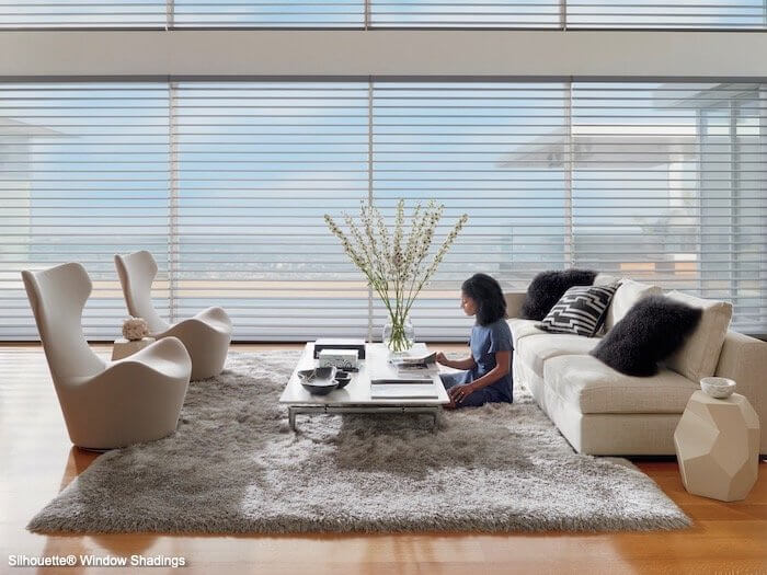 Silhouette Window Shadings - India Silk in Living Room