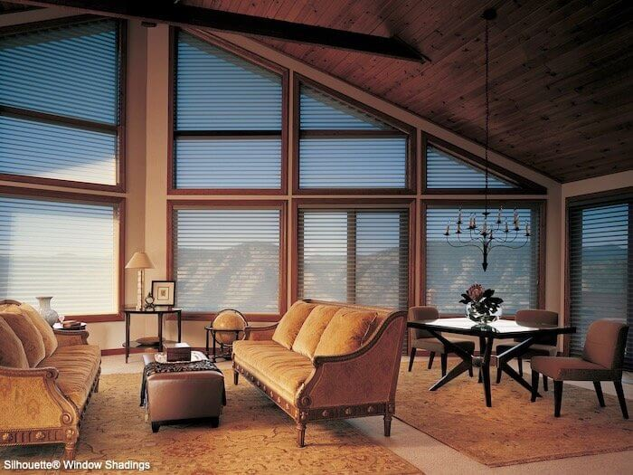Silhouette Window Shadings - Mountain in Living Room