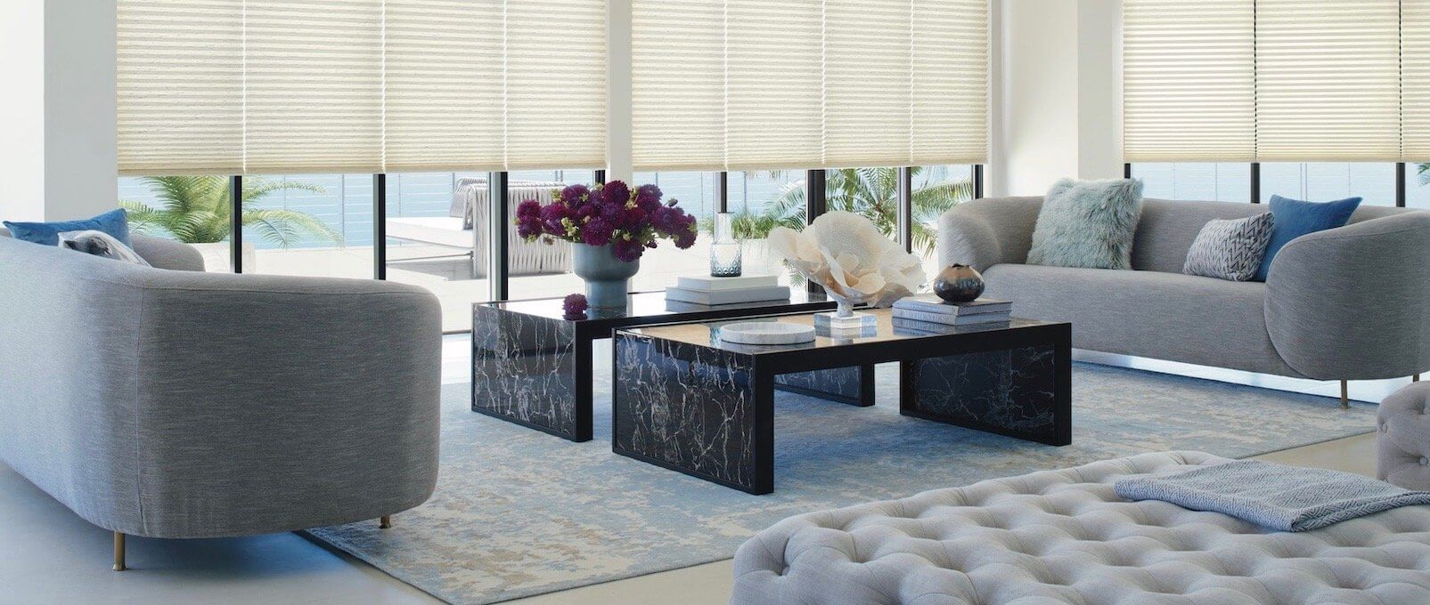 Duette PowerView Duolite - India Silk, Whisper Sheer - Living Room