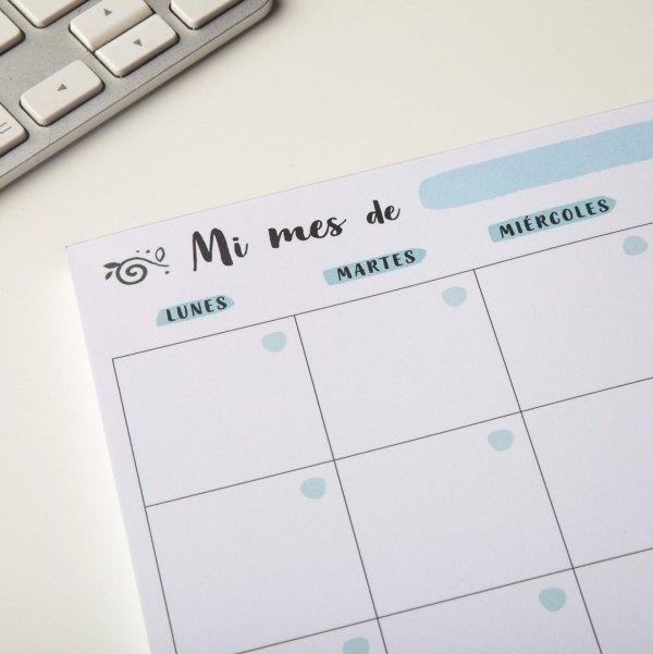 planificador-mensual-pipas-de-girasol-detalle-2