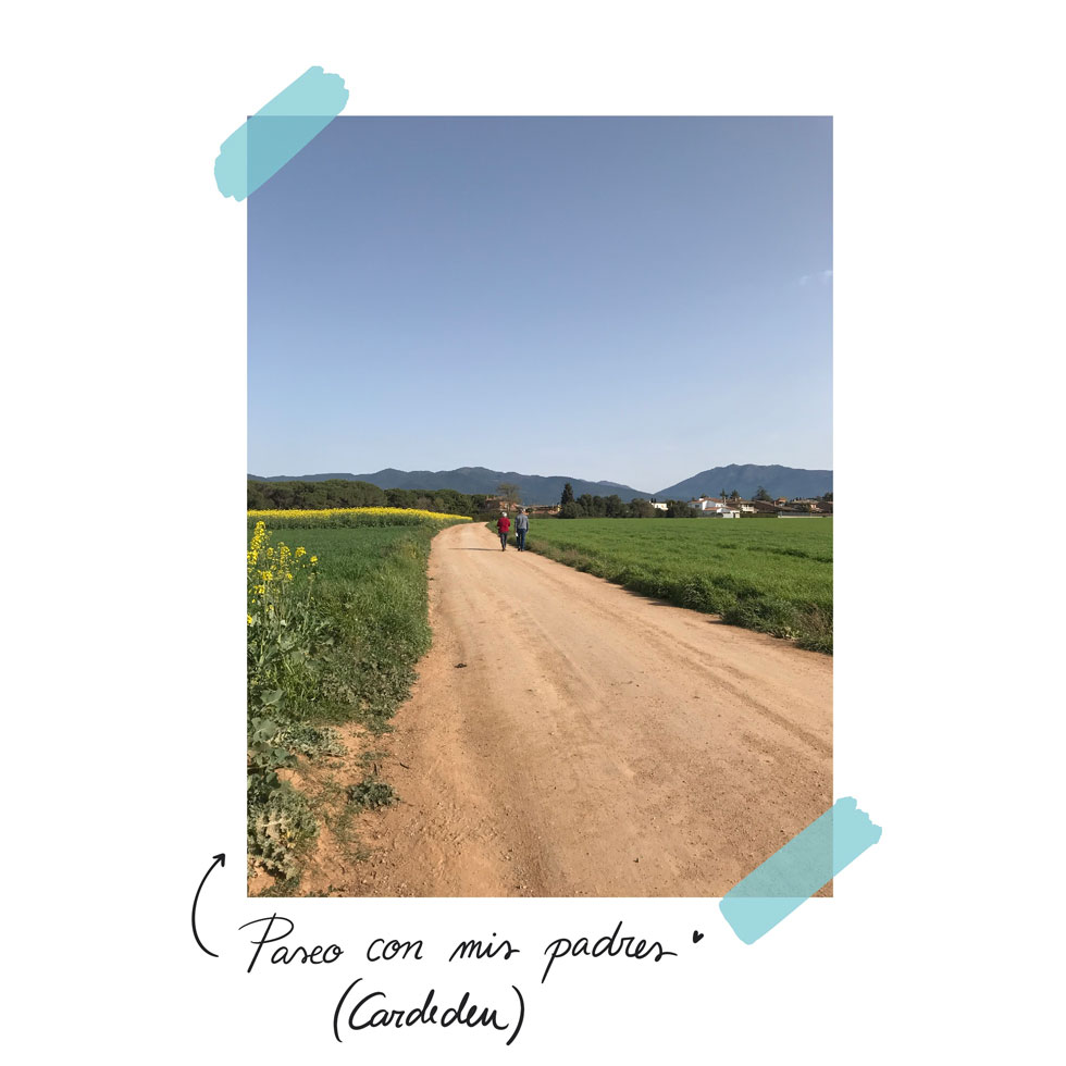 pipasdegirasol-cardedeu-paseo-980x980px