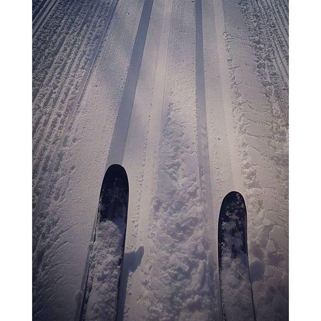 Been waiting ALL WINTER :D #CrossCountry #NeyMemorialPark #Skiiing