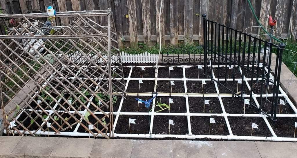 Garden 2020