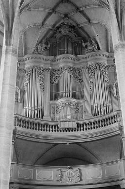 Freiberg organ, photo by Roger Rössing and Renate Rössing