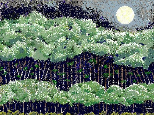 Woods in Avon