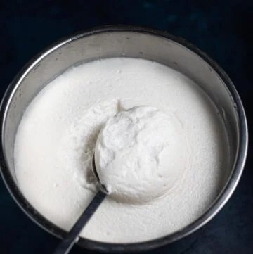 Idli batter fermented in instant pot