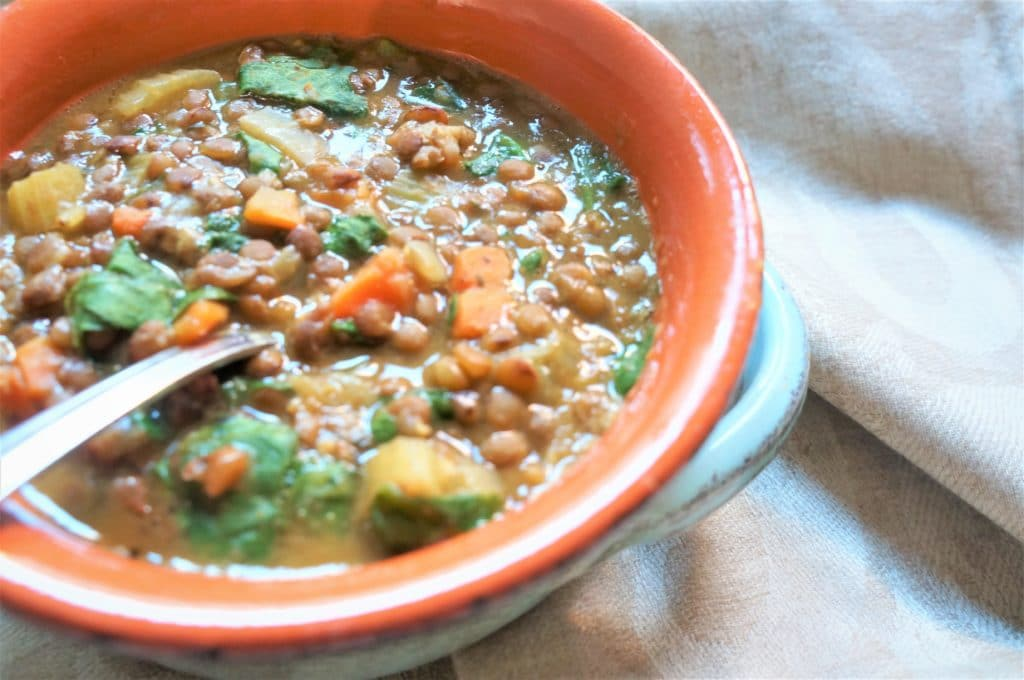 A healthy and delicious vegan brown lentil soup with veggies. Amazingly easy to make in the Pressure Cooker and perfect for a cold day!