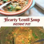 A healthy and delicious vegan brown lentil soup with veggies. Amazingly easy to make in the Pressure Cooker and perfect for a cold day! #lentil #brownlentil #vegan #glutenfree #soup #instantpot #pressurecooker #recipe #middleeastern #healthy #easy #vegetarian | pipingpotcurry.com