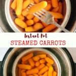 Instant Pot Steamed Carrots