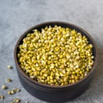 Sprouted green lentils in a black bowl