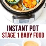 Instant pot stage 1 baby food