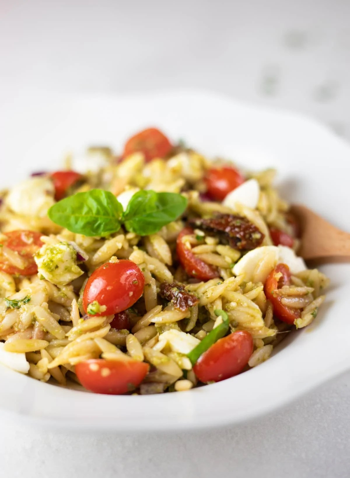 Closeup of pasta salad with orzo, cherry tomatoes, mozzarella and basil leaves
