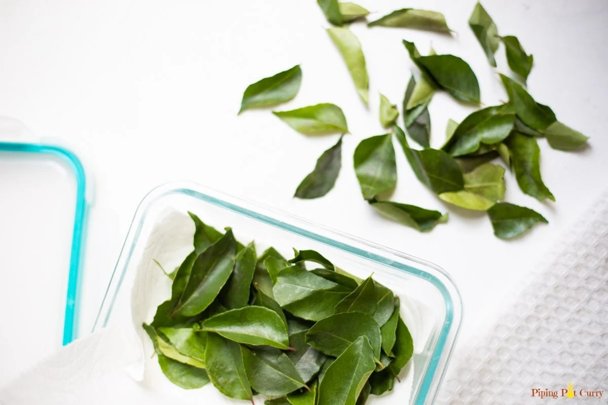 storing curry leaves in a pyrex box in a towel paper in refrigerator or freezer.