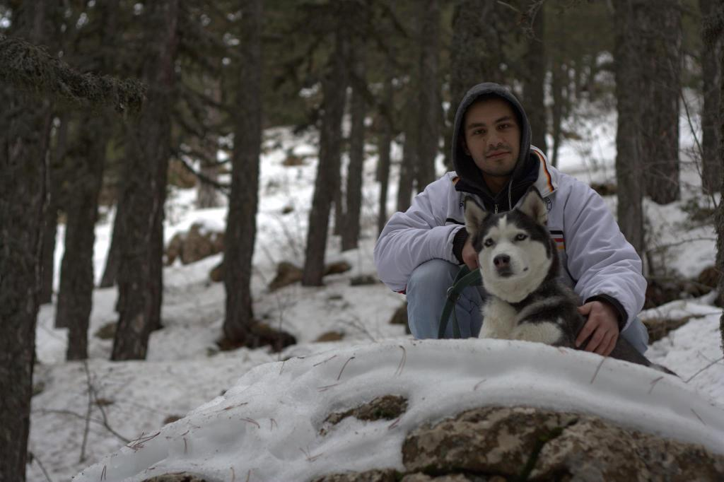 Siberian Husky Elie Troodos Mountains