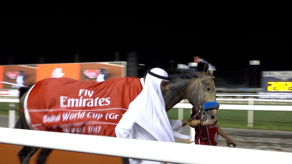 Arrogate - Dubai World Cup 2017