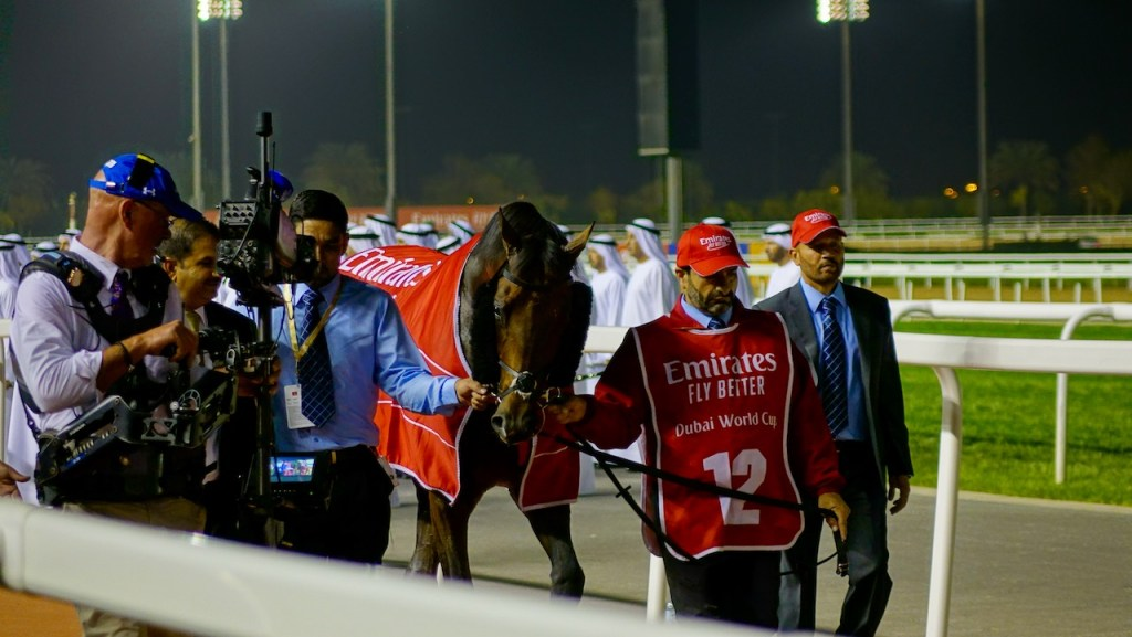 Dubai World Cup 2019