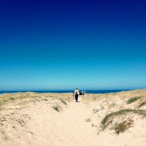 dune-surf