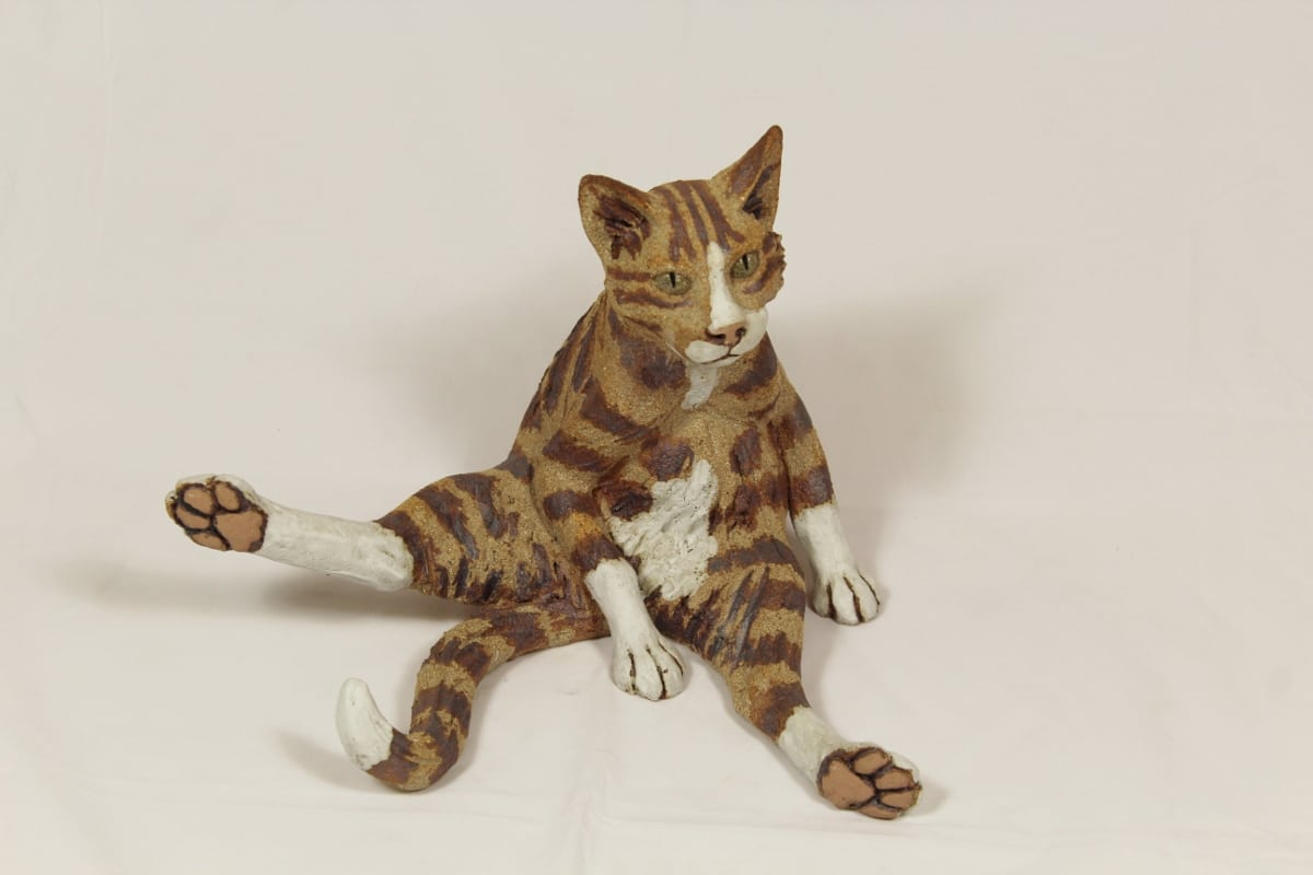 Striped cat with legs out
