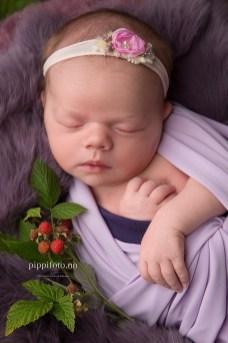 nyfødtjente-nyfødtfotografering