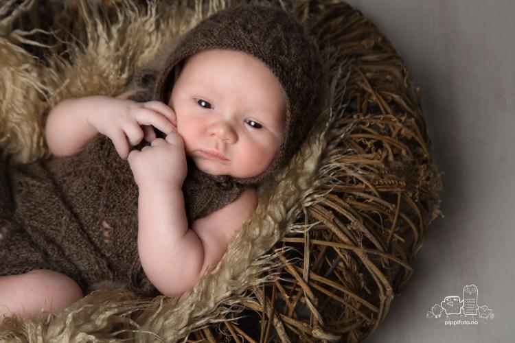 nyfødtfotograf-nyfoedtfotografering-babyfotografering-oslo-fotostudio-kolbotn