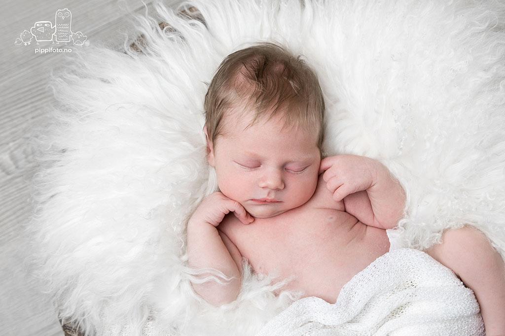 nyfodt-babyfotograf-nyfodtfotografering-ski-nyfodtfotograf-oppegard