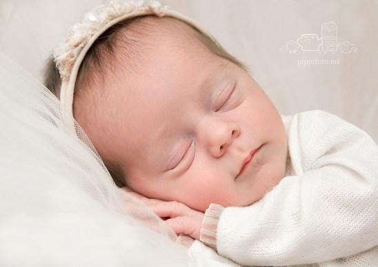 nyfødtfoto, babyfotograf