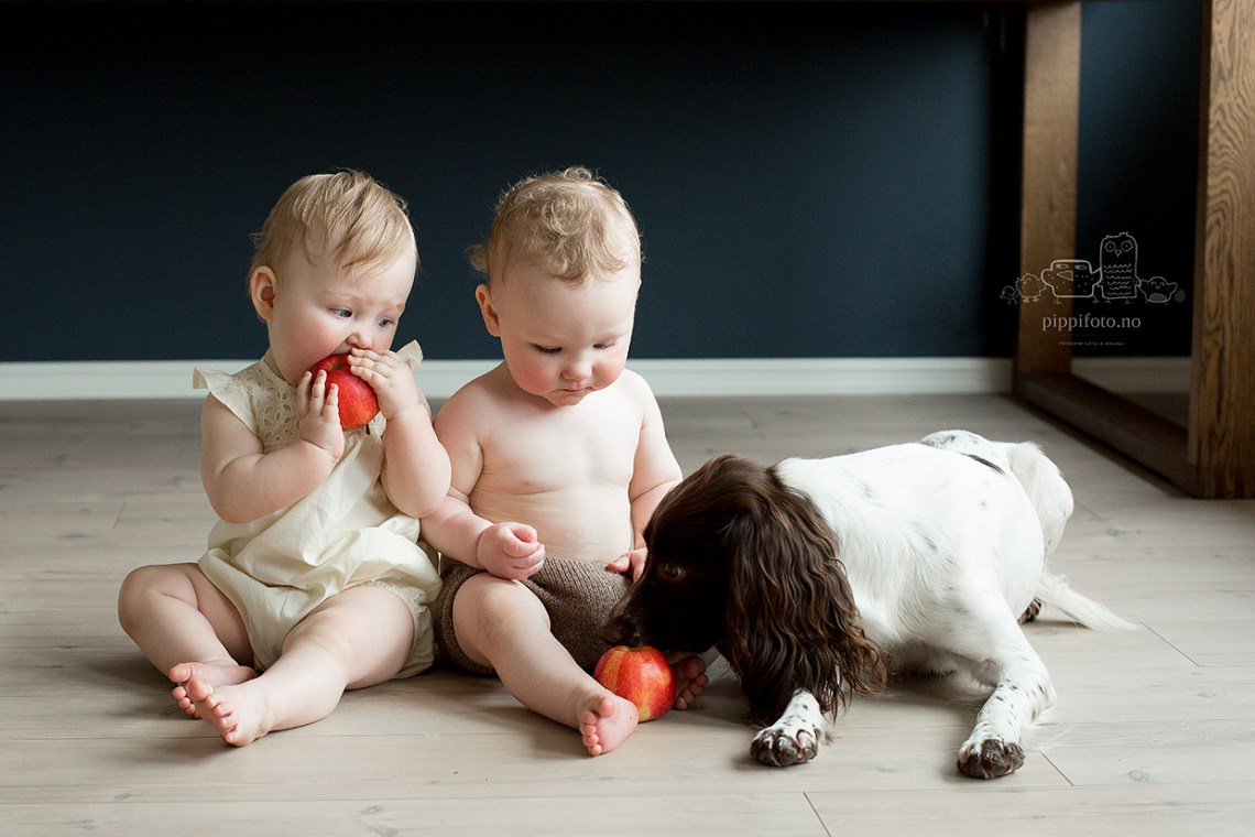 babyfotografering-hjemme-babytvillinger-familiefotografering-oslo