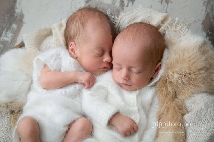 nyfødt-tvillinger-søskenfotografering-pris