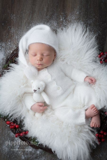 nyfødtbilder-oslo-nyfødtfotografering