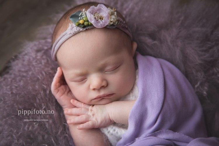 nyfødtjente-nyfødtbaby-amming-nyfødtfotografering-pris-nyfødtbilder