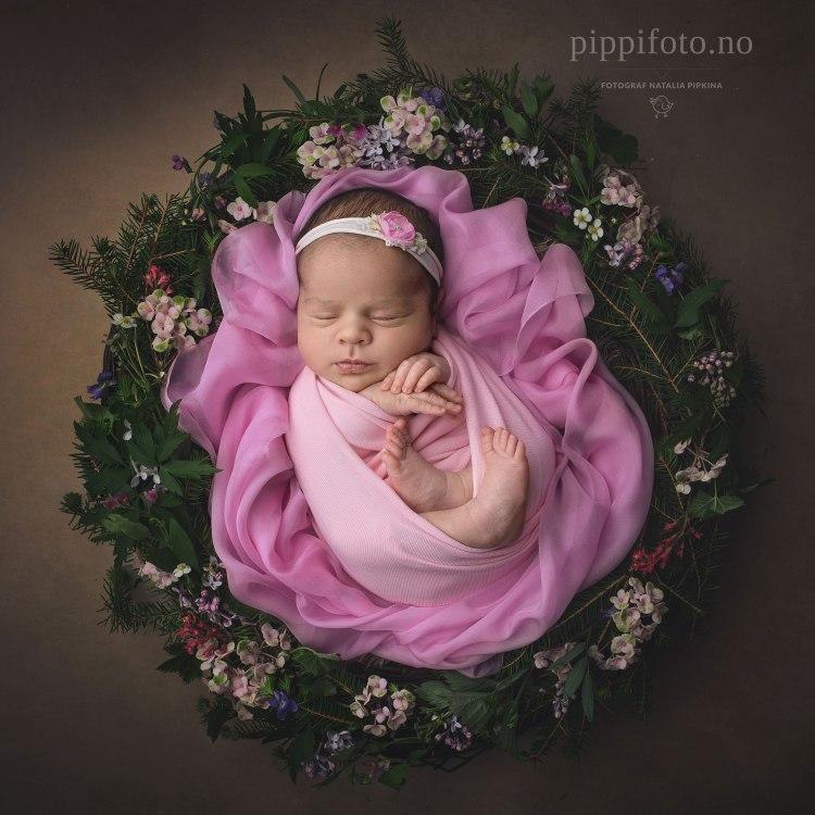 nyfødtfotografering-blomsterkrans-newbornphoto