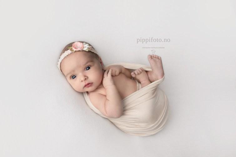 nyfødtfoto-oslo-pris