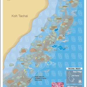 Map of Ko Tachai Reef