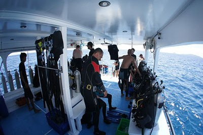 Diving in Similan Islands - Tips On Night Diving.