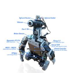 pirate robot cogito