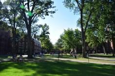 จุฬาก็เป็นแคมปัสสีเขียวนะ แต่ Harvard เขียวกว่ามาก แทบไม่มีถนนรถวิ่งในแคมปัส 555