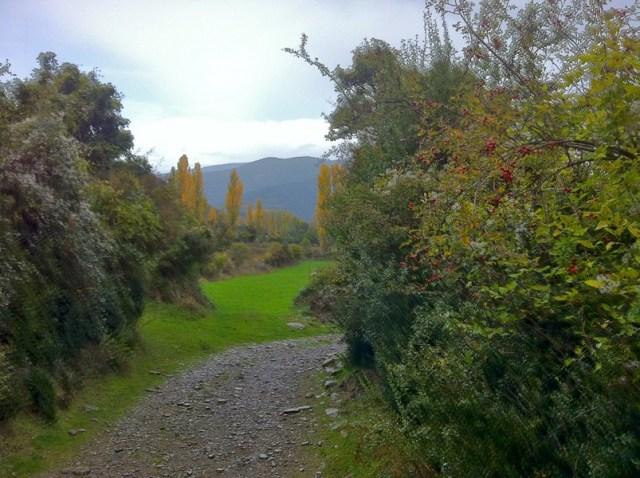 Subiendo por le Camino Santiago