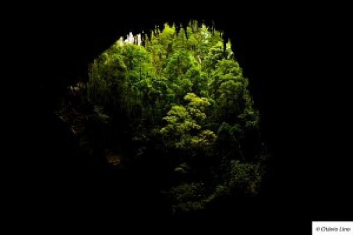 Boca da caverna Temimina, no núcleo Caboclos, com a exuberante Mata Atlântica do lado de fora