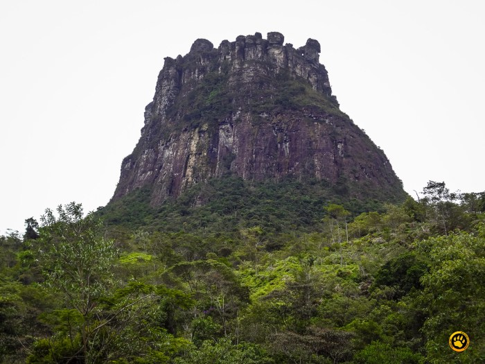 morro do castelo - chapada diamantina