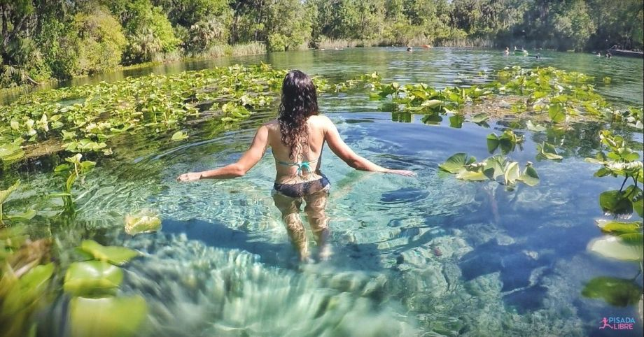 Ocala National Forest - Alexander Springs