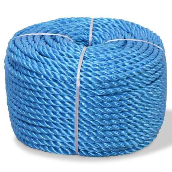 vidaXL Frânghie împletită polipropilenă 10 mm 100 m, albastru