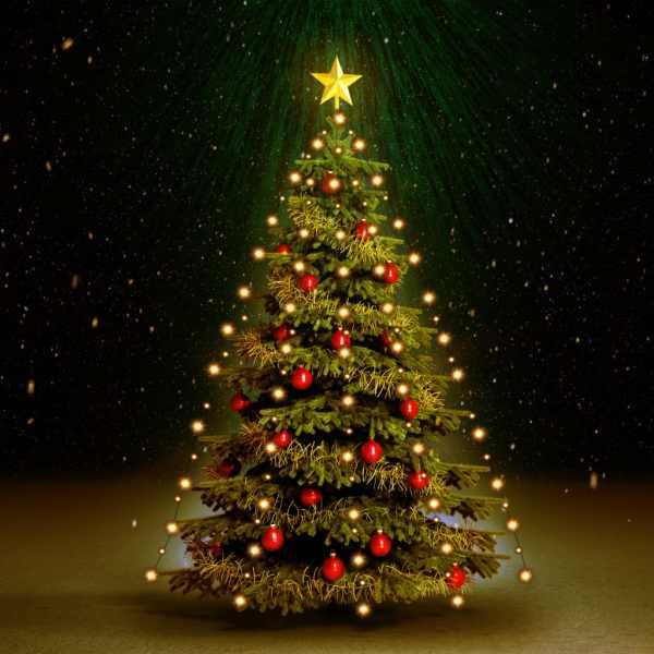 Instalație brad de Crăciun cu 210 LED-uri, 210 cm, IP44