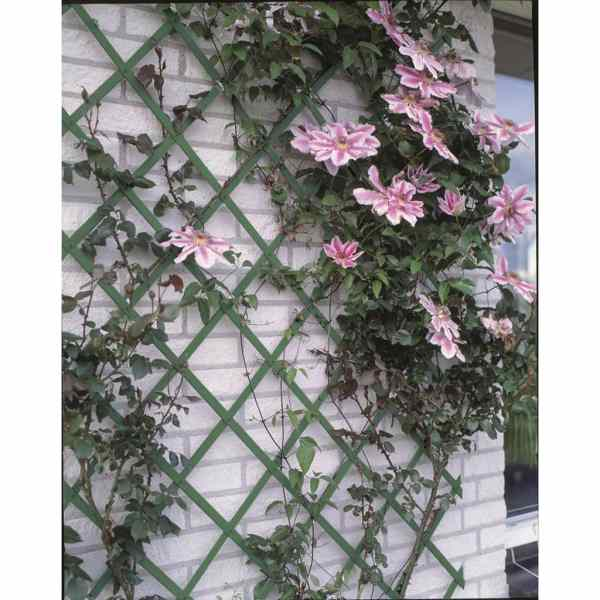 Nature Spaliere de grădină, 2 buc., verde, 100 x 200 cm, PVC