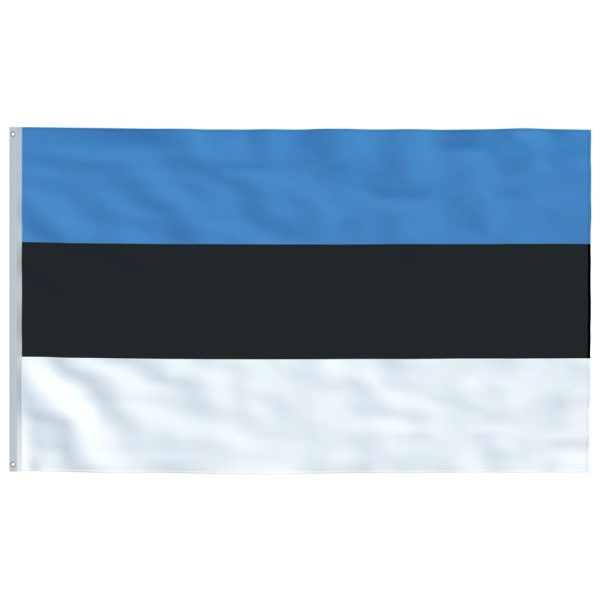 vidaXL Steag Estonia, 90 x 150 cm